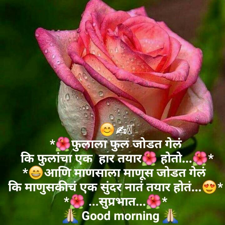 good morning 🌄 - * फुलाला फुलं जोडत गेलं कि फुलांचा एक हार तयार होतो . * आणि माणसाला माणूस जोडत गेलं कि माणुसकीचं एक सुंदर नातं तयार होतं . . . * | * . . . सुप्रभात . . . * A Good morning i - ShareChat