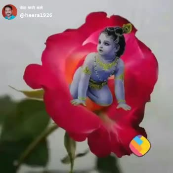 📹मजेदार वीडियो📹 - ShareChat