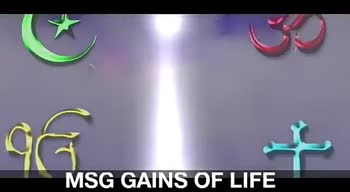 🤳ਮੇਰੀ ਵੀਡੀਓ - MSG GAINS OF LIFE . SEG MSG GAINS OF LIFE MSG GAINS OF LIFE - ShareChat