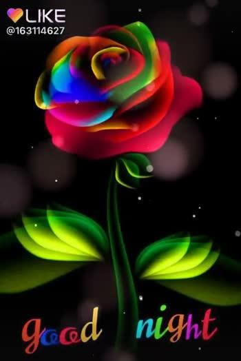 🌙  ਗੁੱਡ ਨਾਇਟ - LIKE @ 163114627 Good night . LUKEAPP LIKE APP Magic Video Maker & Community - ShareChat
