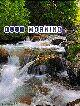 good morning - GOOD MORNING Lola 31 - ShareChat
