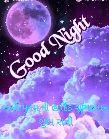 🌙 શુભરાત્રી - Good Night મ , ની હાર્દિક શુટીની તો ન રાખીને - ShareChat