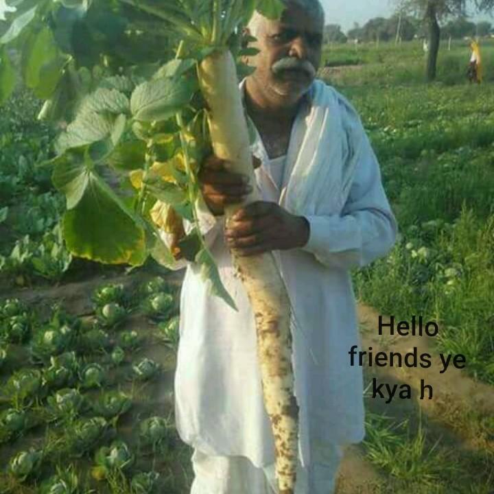 🎭अजब ग़ज़ब टैलेंट के भूखे - Hello friends ye kya h - ShareChat