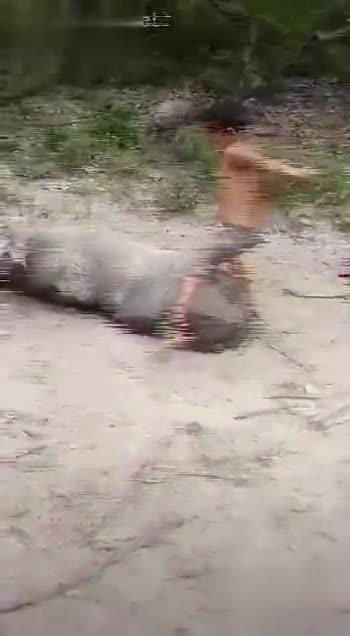 🐘 'જંગલી' ફિલ્મ 🎬 - ShareChat