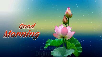 शुभ प्रभात# - Good Morning · Digita Good Morning - ShareChat
