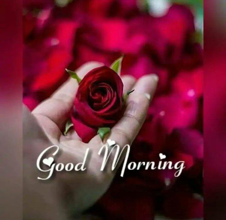 Lovely Good Morning Images Satyanarayana Sharechat Funny