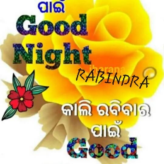 💐ଶୁଭ ରବିବାର - । ପାଇଁ । Good Night RABINDRA କାଲି ରବିବାର ପାଇଁ - ShareChat