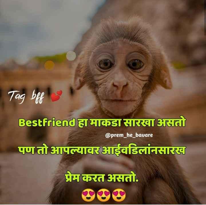 best friend😘😘 - Tag bff Bestfriend हा माकडा सारखा असतो @ prem _ he _ bavare पण तो आपल्यावर आईवडिलांनसारख प्रेम करत असतो . - ShareChat
