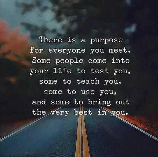 best friends - There is a purpose for everyone you meet . Some people come into your life to test you , some to teach you , some to use you , and some to bring out the very best in you . - ShareChat