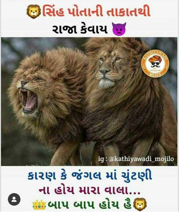 🔫🚬👑bhai no vatttttt👑🚬🔫 - ઉસિંહ પોતાની તાકાતથી રાજા કેવાય KYAT MONTILO ig : @ kathiyawadi _ mojilo કારણ કે જંગલ માં ચુંટણી ના હોય મારા વાલા . . . Mછે . બાપ બાપ હોય હૈ - ShareChat