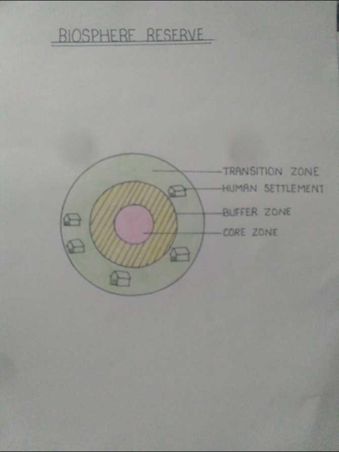 Biology  - BIOSPHERE RESERVE TRANSITION ZONE HUMAN SETTLEMENT BUFFER ZONE CORE ZONE - ShareChat