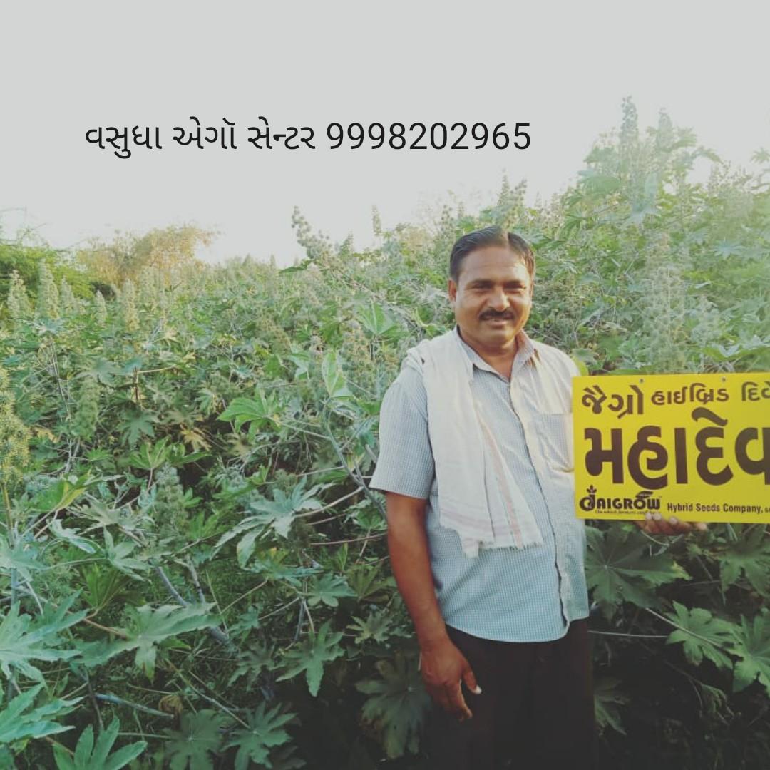 🌲 વૃક્ષો વાવો અભિયાન - વસુધા એગૉ સેન્ટર 9998202965 જેગ્રો હાઈબ્રિડ દિ મહાદેવ CAIGROW Hybrid Seeds Company , - ShareChat