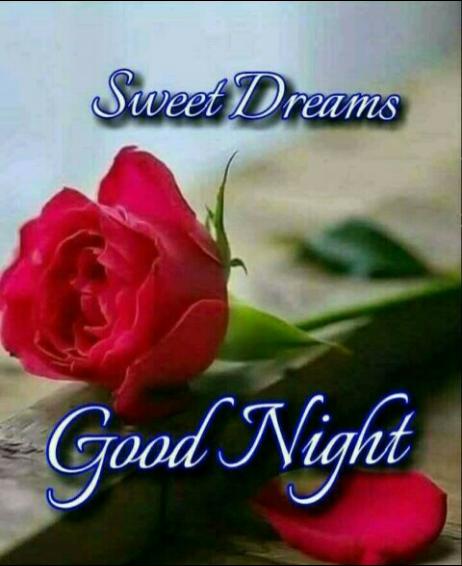🌃ಶುಭರಾತ್ರಿ - Sweet Dreams Good Night - ShareChat