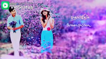 morattu singles - Download from உன் சட்டையோடு ஒட்டி வெரும் 11 பட்டு ரோஜா Download from 31தப் செப்பது வீண் - ShareChat