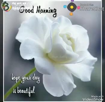 💏इश्क़-मोहब्बत - Shareclat 4898 / ishalvsbhashkar Posted One Sharechat Good Morning Model VideoShow पोडa Posted On : ShareChat Good morning Made with VideoShow - ShareChat