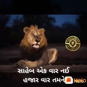 🎯 પ્રેરણાત્મક વિડિઓ - ShareChat