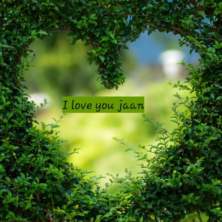 💓 પ્રેમ વિડિઓ - I love you jaan - ShareChat