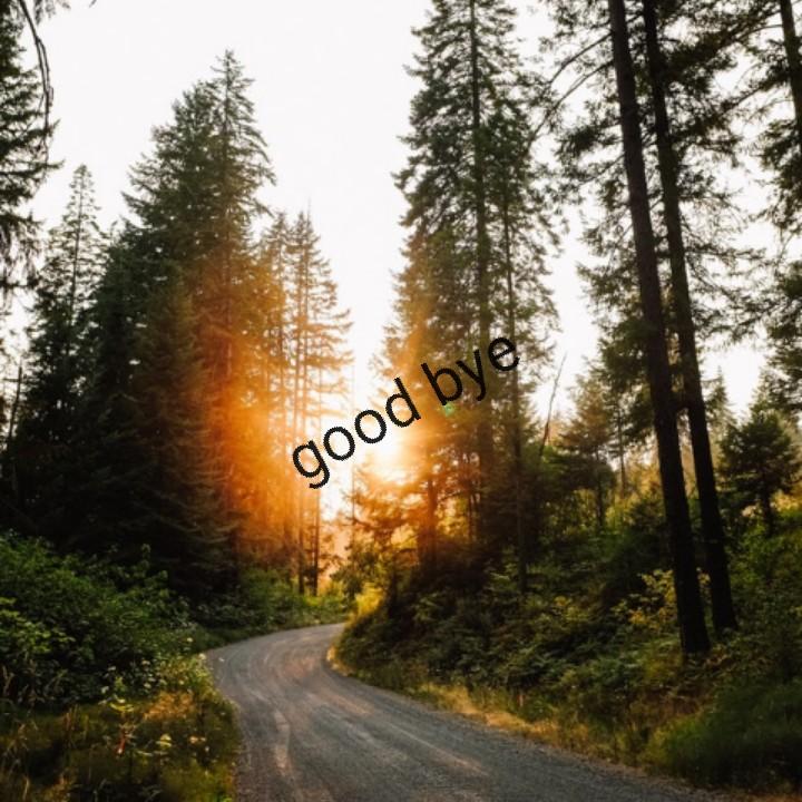🏏ধুন্ধুমার ওয়ার্ল্ড কাপ - good - ShareChat