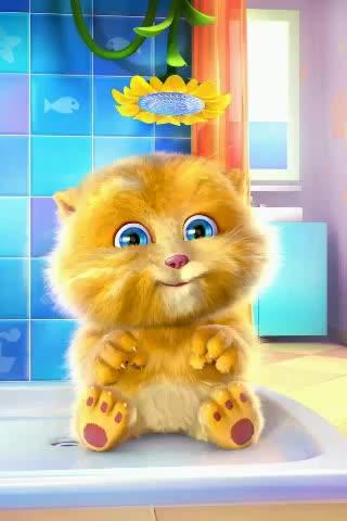 🤣হাস্যকর ভিডিও - Talking Ginger www . 07n . co / Ginger - ShareChat