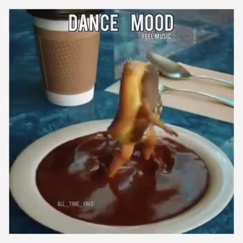 dance - DANCE MOOD FEEL MUSIC ALL _ TIME FAVO DANCE MOOD FEEL MUSIC ALL _ TIME _ FAVO - ShareChat