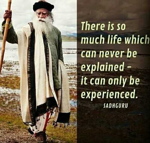 career guidance - There is so much life which can never be explained it can only be experienced . SADHGURU - ShareChat