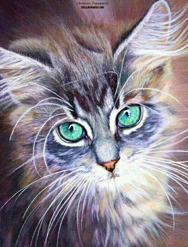 cat lovers - Christina Papaglanal கன்னியா - ShareChat