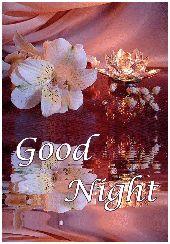 good night gif - ShareChat