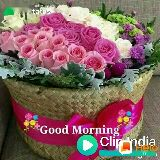 🎶रोमांटिक गाने - 2QD MORNING aron tatus HAVE AN AWESOME DAY . EMYDENS CREATIONS CON Clifandia - ShareChat