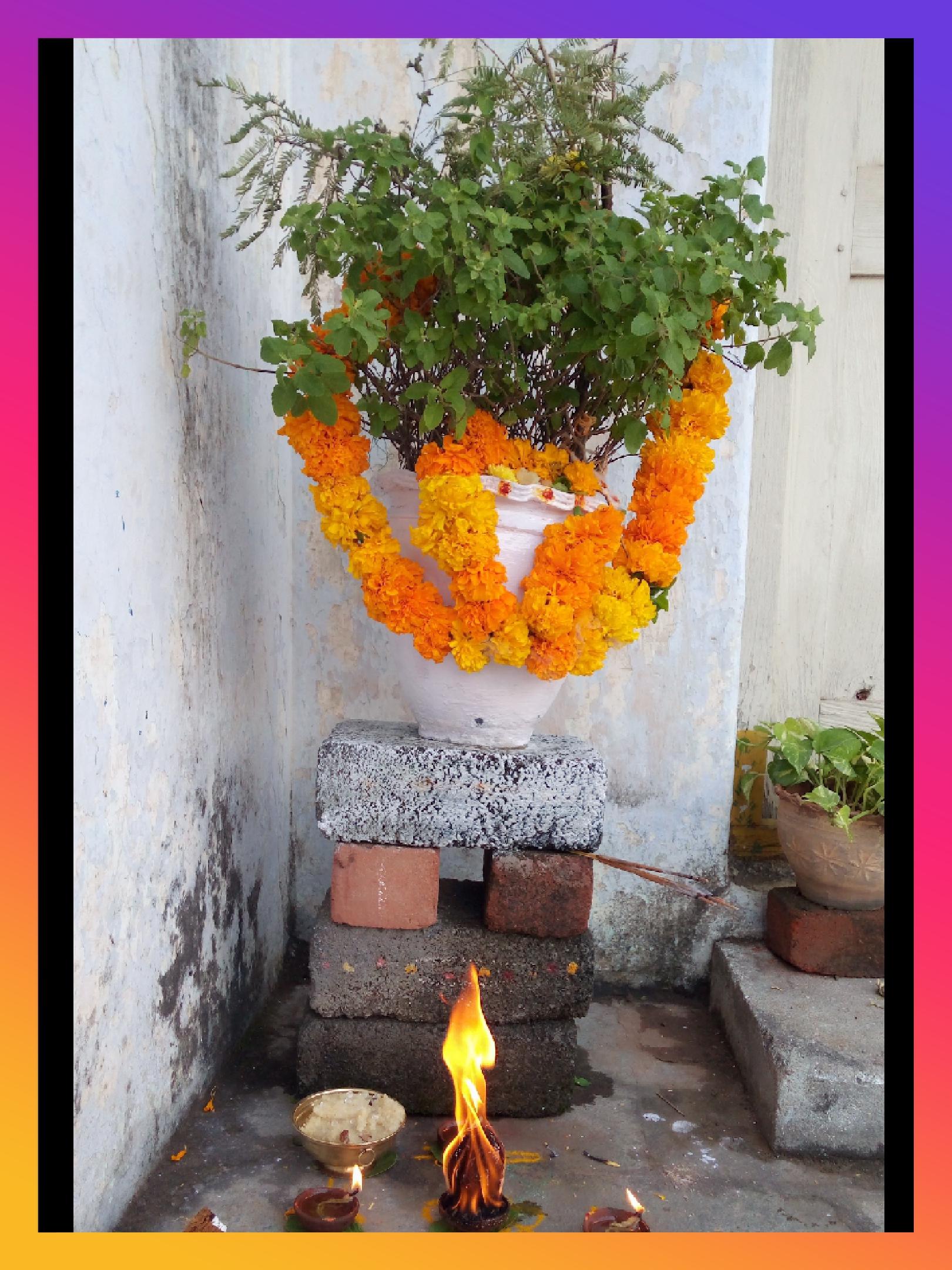 కార్తీక మాసం - ShareChat