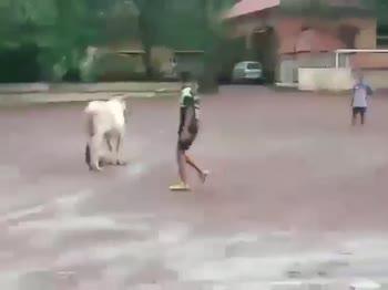 india football - ShareChat