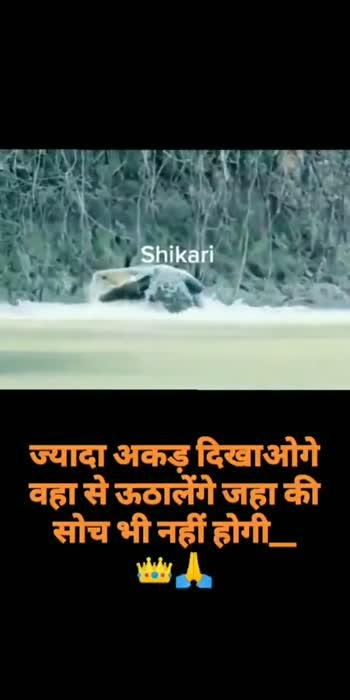मराठी वाघिन - ShareChat