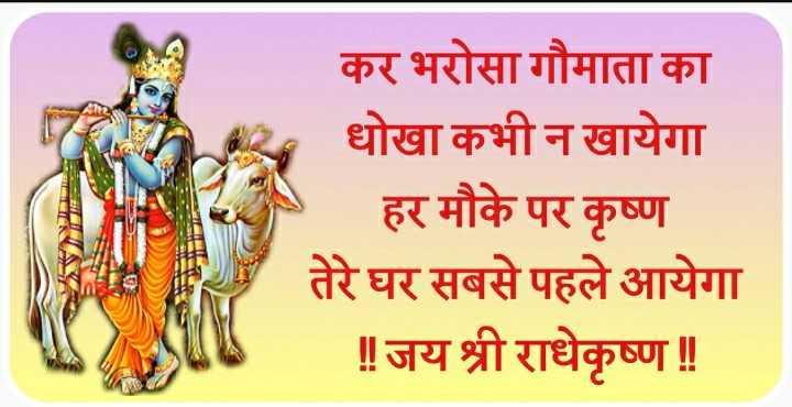 cow - कर भरोसा गौमाता का धोखा कभी न खायेगा | हर मौके पर कृष्ण तेरे घर सबसे पहले आयेगा ॥ जय श्री राधेकृष्ण ! - ShareChat