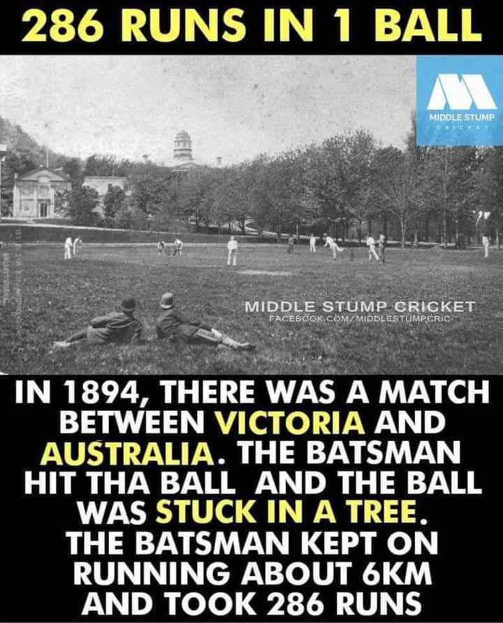 cricket ಅಡ್ಡ.... - 286 RUNS IN 1 BALL MIDDLE STUMP CRICKET MIDDLE STUMP CRICKET FACEBOOK . COM / MIDDLESTUMPERIC IN 1894 , THERE WAS A MATCH BETWEEN VICTORIA AND AUSTRALIA . THE BATSMAN HIT THA BALL AND THE BALL WAS STUCK IN A TREE . THE BATSMAN KEPT ON RUNNING ABOUT 6KM AND TOOK 286 RUNS - ShareChat