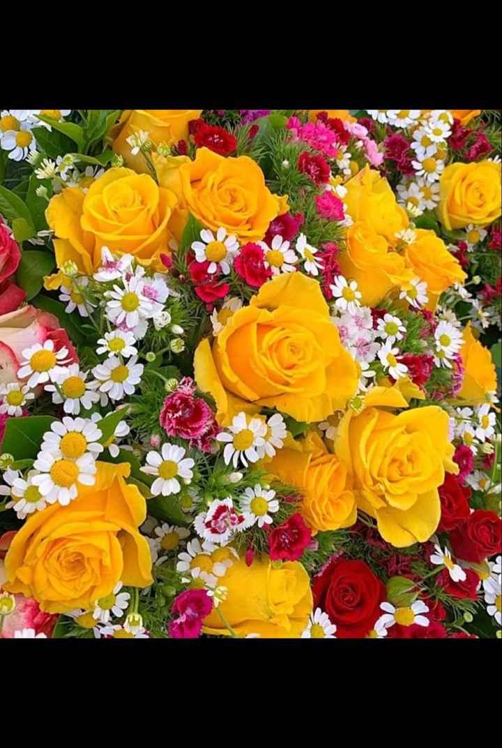 cute flowers - ShareChat