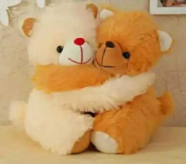 cute teddy - ShareChat