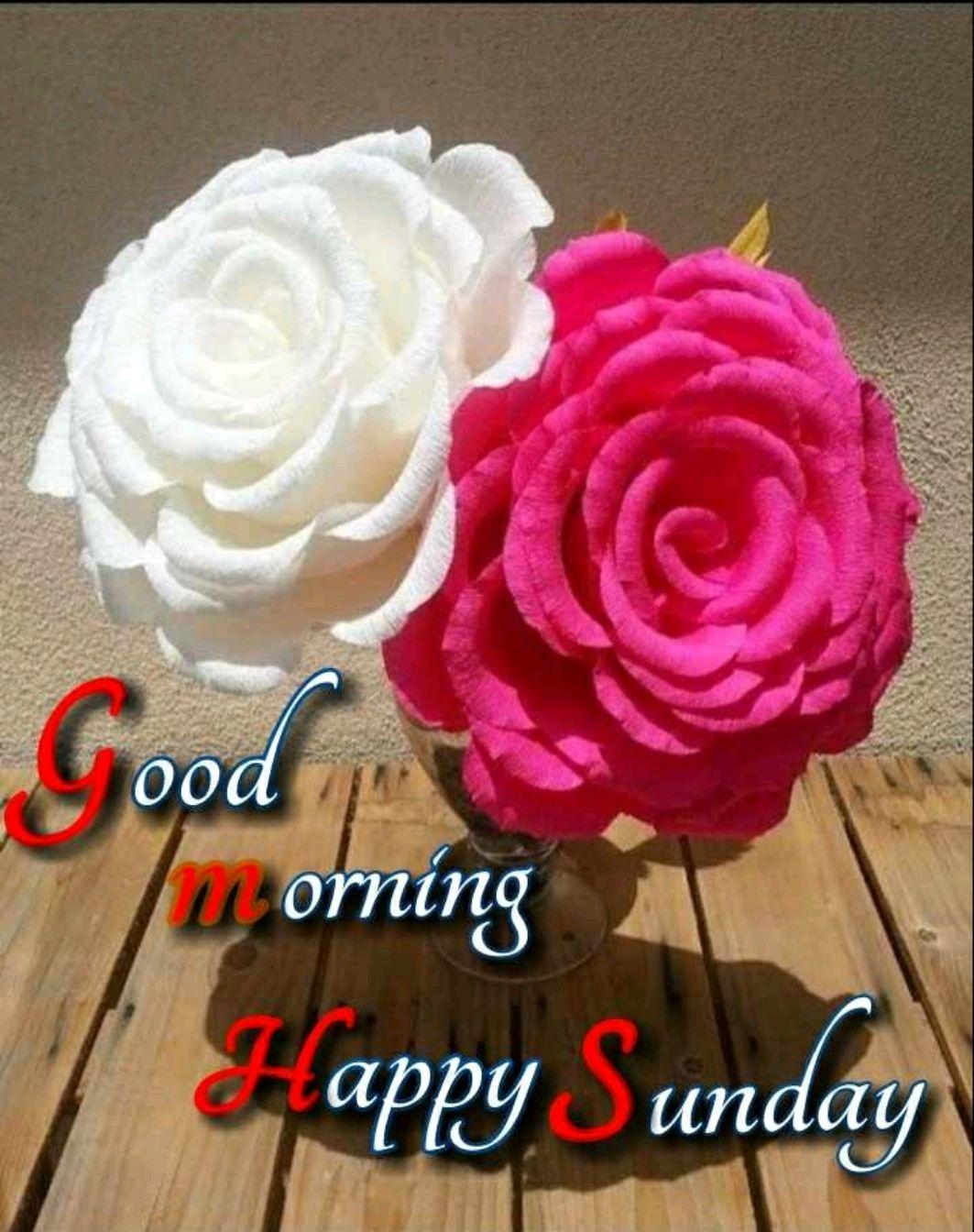 🌞সুপ্রভাত - ood u orning appy Sunday - ShareChat