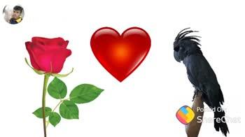 💖 love story 💖 - Posted On : ✓ ShareChat ShareChat PGA Kumar pgakumar I love friends only Follow - ShareChat