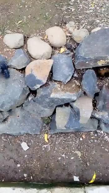 🗿 दगडांचे व्हिडीओ चॅलेंज - ShareChat