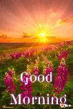 🌞সুপ্রভাত - - Good | _ Morning lelo - ShareChat