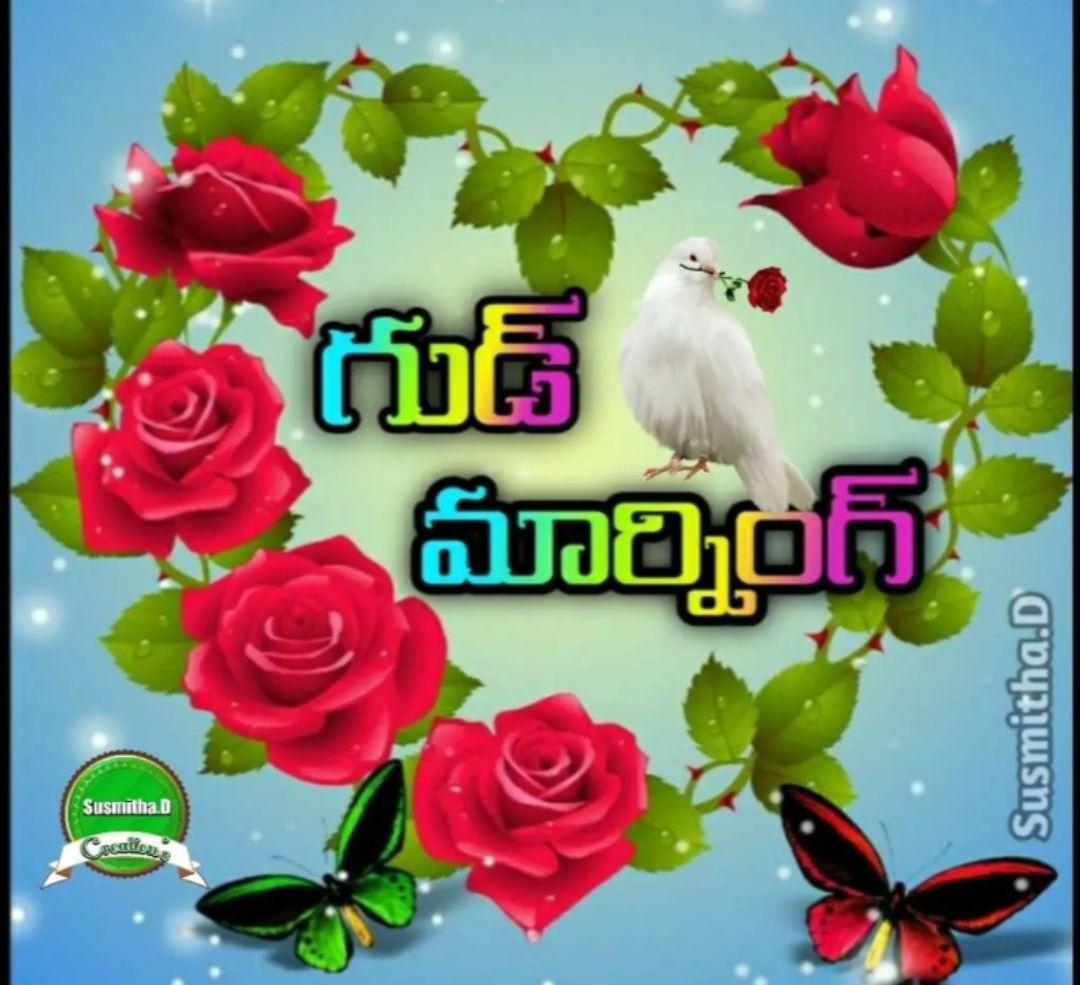 🌅శుభోదయం - ఆ గుడ్ మార్నింగ్ Susmitha . D SISHinal - ShareChat