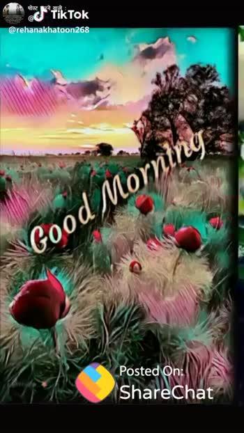 🌞সুপ্রভাত - पोस्ट करने वाले : @ 8i Good Morning Posted On : ShareChat @ rehanakhatoon 268 ShareChat watement Ranke madhu verma I love my family Follow - ShareChat