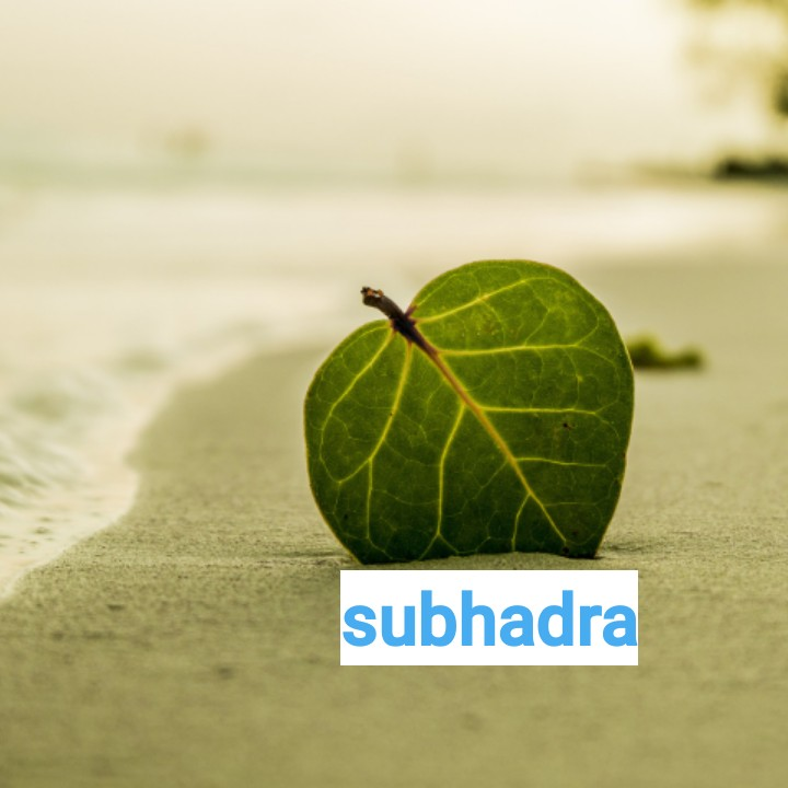 name art - subhadra - ShareChat