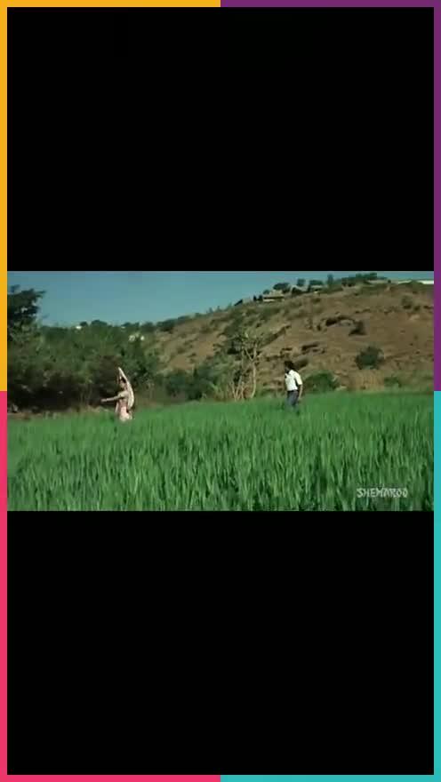 🎶मराठी गाणी - रोपोसो लगेच अॅप डाऊनलोड करा SHEMAROO ROPOSO India ' s no . 1 video app Download now : 0 Shweta Kamble - @ shwetakamble236 - ShareChat
