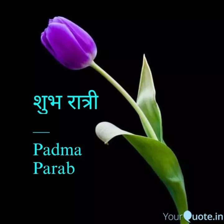🌙 શુભ રાત્રી - शुभ रात्री Padma Parab YourQuote . in - ShareChat