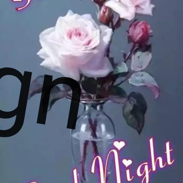 🌙शुभरात्रि - gh night - ShareChat