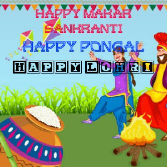 happy makarsankrati pongal lohri - ShareChat