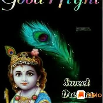 good night 😊😊😴😴 - Rai - 420official : : Share Shayris , Quotes , WhatsApp Status Google Play - ShareChat