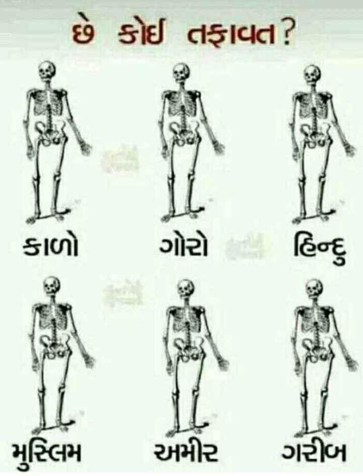desh bhakti - | છે કોઈ તફાવત ? મુસ્લિમ અમીર ગરીબ - ShareChat