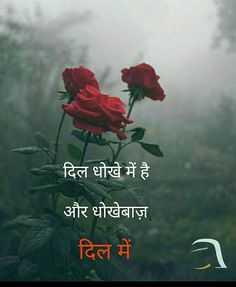dhokha - दिल धोखे में है । और धोखेबाज़ दिल में - ShareChat