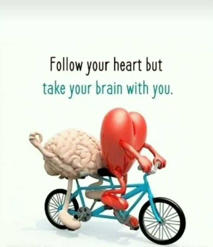 dil. thi. dil. suthi - Follow your heart but take your brain with you . - ShareChat